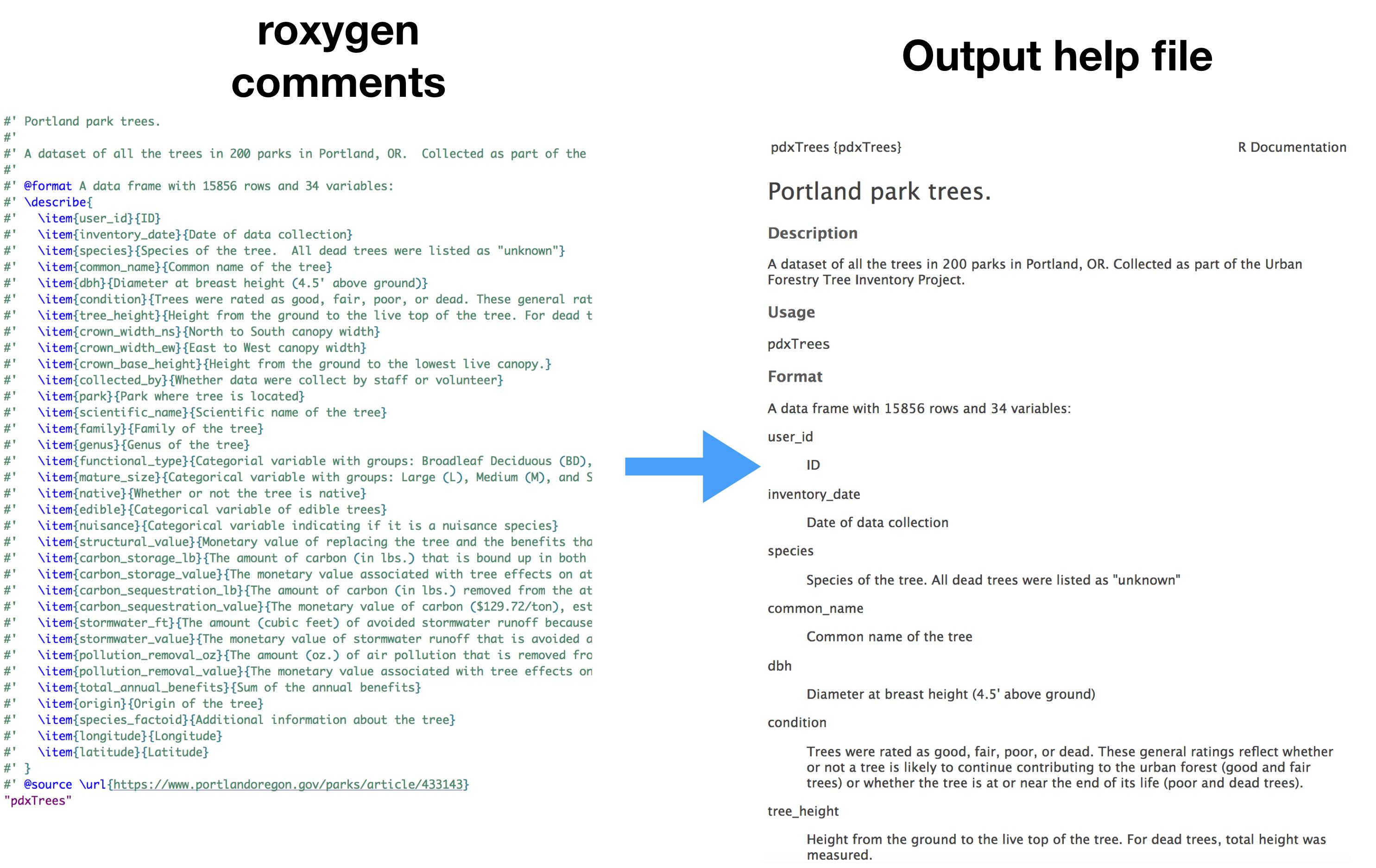 roxygen_help_file